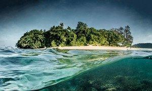 Un récif corallien en Papouasie-Nouvelle-Guinée.