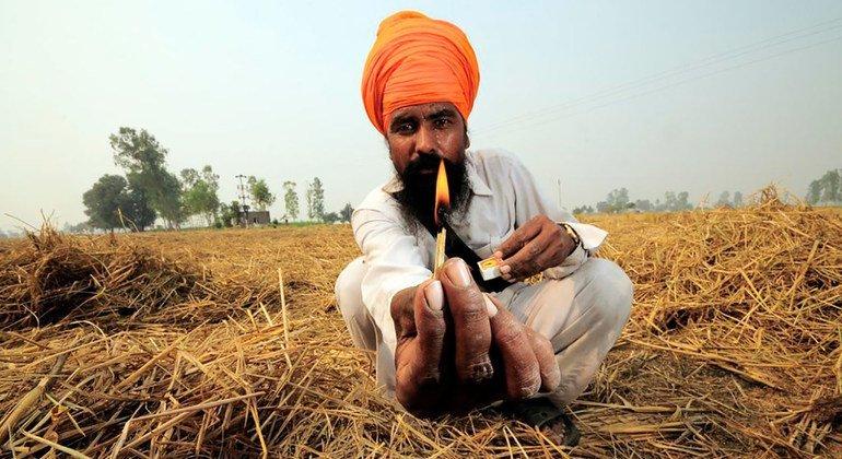 भारत के पंजाब राज्य में एक किसान फ़सल के अवशेष जलाने की तैयारी कर रहा है.