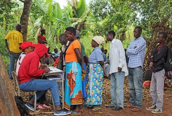 Em Moçambique, famílias afetadas pelo ciclone Idai receberam sementes e ferramentas agrícolas.