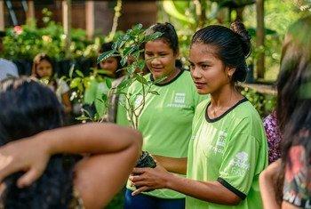 Os estudantes aprendem sobre conservação ambiental, qualidade de vida e rendas geradas pela floresta.