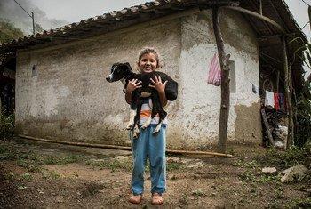 哥伦比亚农村的一名儿童