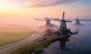 Утренний туман в Нидерландах