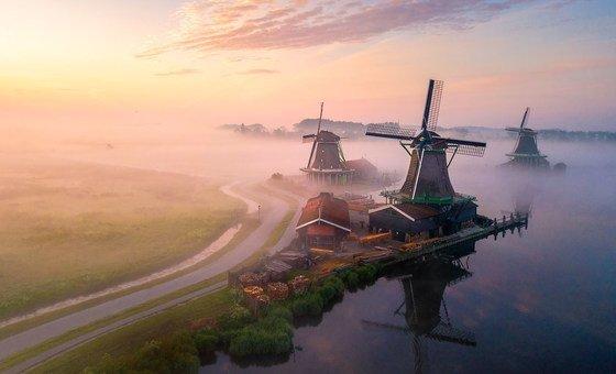 Morning mist rises across fields in rural Netherlands.