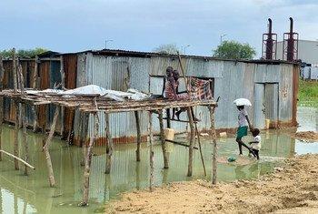 En dépit de la montée des eaux, beaucoup de familles continuent de vivre dans des maisons inondées dans l'Etat de Jonglei, au Soudan du Sud.
