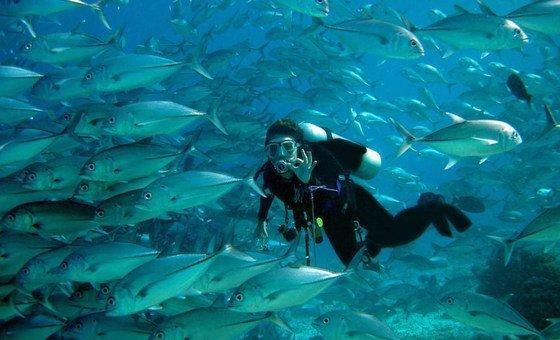 A brasileira Karina Dubeux foi uma das sobreviventes do tsunami que ocorreu no Oceano Índico em dezembro de 2004.