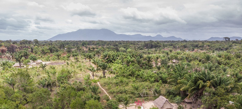 A conservação é importante para a biodiversidade e a segurança alimentar na região de Rupununi, na Guiana.