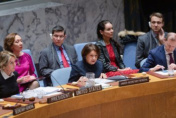 Rosemary DiCarlo, Under-Secretary-General for Political Affairs, briefs the members of the UN Security Council.