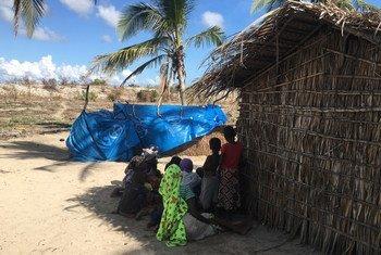 Em Moçambique, a IIlha de Matemo, em Cabo Delgado, abriga deslocados que fugiram da violência.