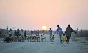 Two young boys carry water next to an camp for displaced people near the town of Jowhar, Somalia..