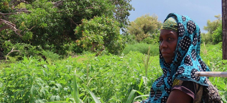 Telma Cabre é lider comunitária, agricultora e beneficiária da iniciativa do PMA.
