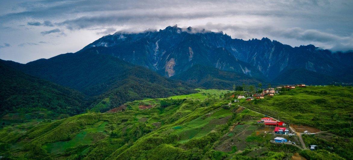 Malasia es uno de los países con la mayor biodiversidad del mundo.