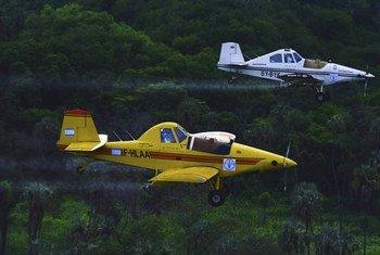 La FAO a effectué des relevés aériens sur les criquets pèlerins en Ethiopie.