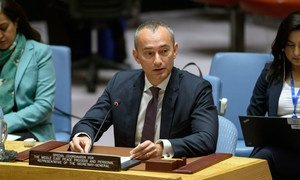 Le Coordonnateur spécial des Nations Unies pour le processus de paix au Moyen-Orient, Nickolay Mladenov, devant le Conseil de sécurité.