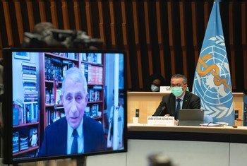 د. أنثوني فاوتشي يلقي كلمة خلال جلسة المجلس التنفيذي لمنظمة الصحة العالمية.