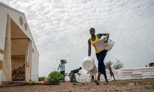 No Quênia, o Acnur distribuiu kits de higiene e lenha.