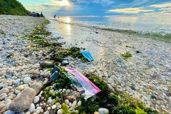 Lixo marinho, incluindo plástico, papel e madeira, acaba indo para as profundezas dos oceanos.