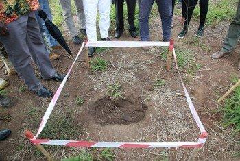 UNMAS wakitegua mabomu katika eneo la Equatoria mashariki nchini Sudan Kusini. Pichani ni eneo shambani ambako kilipuzi kimebainika