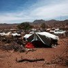 Un camp de personnes déplacées à Sortoni, au Darfour, au Soudan