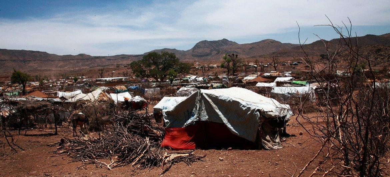 दार्फ़ूर में सामुदायिक हिंसा से लाखों लोगों के लिये संकट खड़ा हो गया है. सोरतोनी में घरेलू विस्थापितों के लिये एक शिविर.