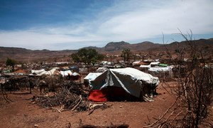 Intercommunal violence in Darfur has left millions in need of assistance. Pictured here, an IDP settlement in Sortoni. (file photo)