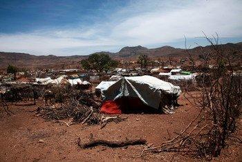 La violencia entre comunidades en Darfur hace que millones de personas necesiten ayuda. En la foto, un asentamiento de desplazados internos en Sortoni. (Foto de archivo)
