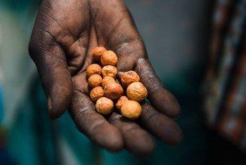Regiãoafricanaé aúnicado globocom tendência de alta de índices de desnutrição
