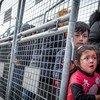 Среди беженцев, скопившихся на турецко-греческой границе, много женщин с детьми