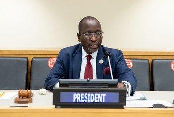 बोत्सवाना के राजदूत कॉलेन विक्सेन केलापिले का, आर्थिक व सामाजिक परिषद का अध्यक्ष चुने जाने के बाद उदघाटन सम्बोधन.