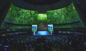 Саммит по климату в ООН