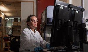 En el Instituto Jenner de la Universidad de Oxford continúa la investigación sobre el desarrollo de una vacuna contra el coronavirus.