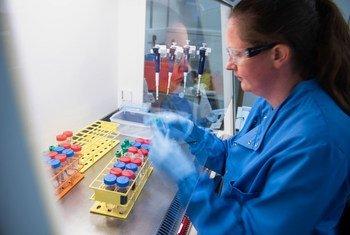 يتم اختبار العينات من قبل العلماء في معهد جينر التابع لجامعة أكسفورد في ظل استمرار تطوير لقاح ضد فيروس كورونا.