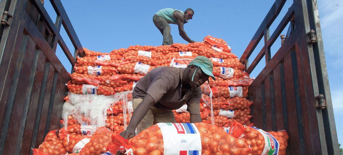 New UN-backed framework to boost agricultural trade between African nations
