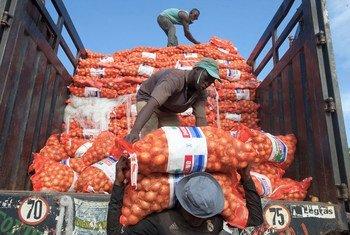 Des hommes déchargent des sacs d'oignons d'un camion à Bamako, au Mali.