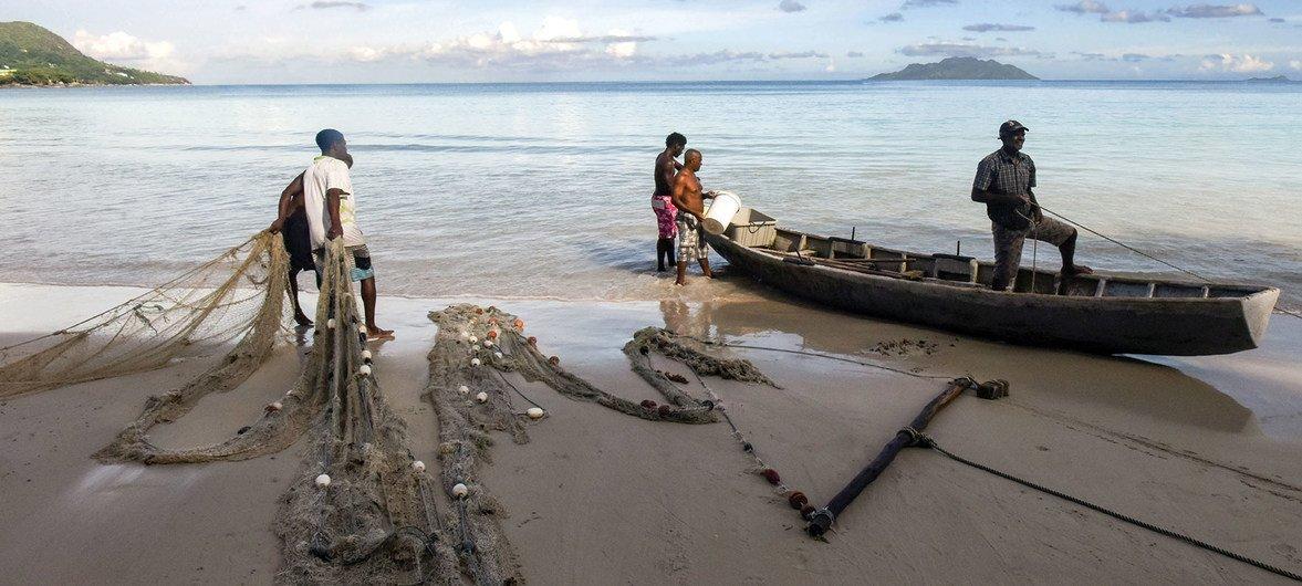 Множество людей из-за COVID-19 лишаются дохода - как эти рыбаки, поставляющие рыбу на местные курорты.