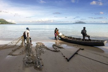 Fishermen at Beau Vallon beach in the Seychelles prepare their nets for fishing.