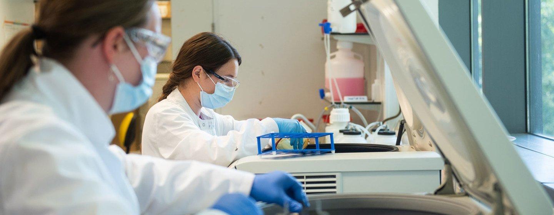 Para a OMS, uso da tecnologia mRNA é um passo ambicioso e significativo para o fim da malária
