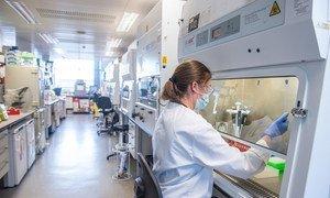 В ВОЗ призвали производителей подавать заявки на включение их вакцин от COVID-19 в список препаратов, одобренных для применения в чрезвычайных ситуациях.