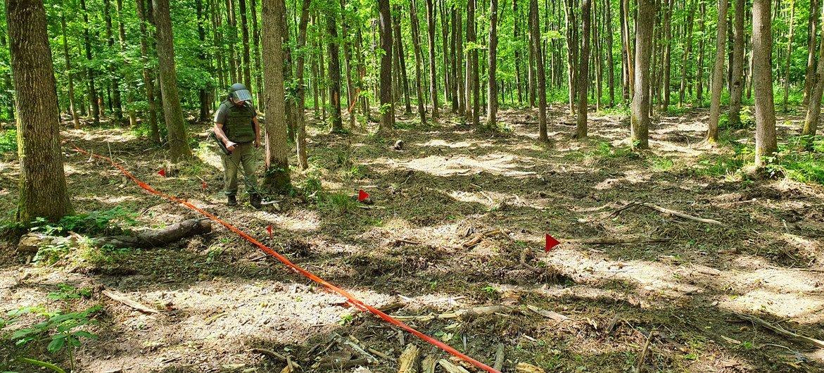 工作人员正在克罗地亚中部的锡萨克-莫斯拉维纳县开展集束弹药清理工作。
