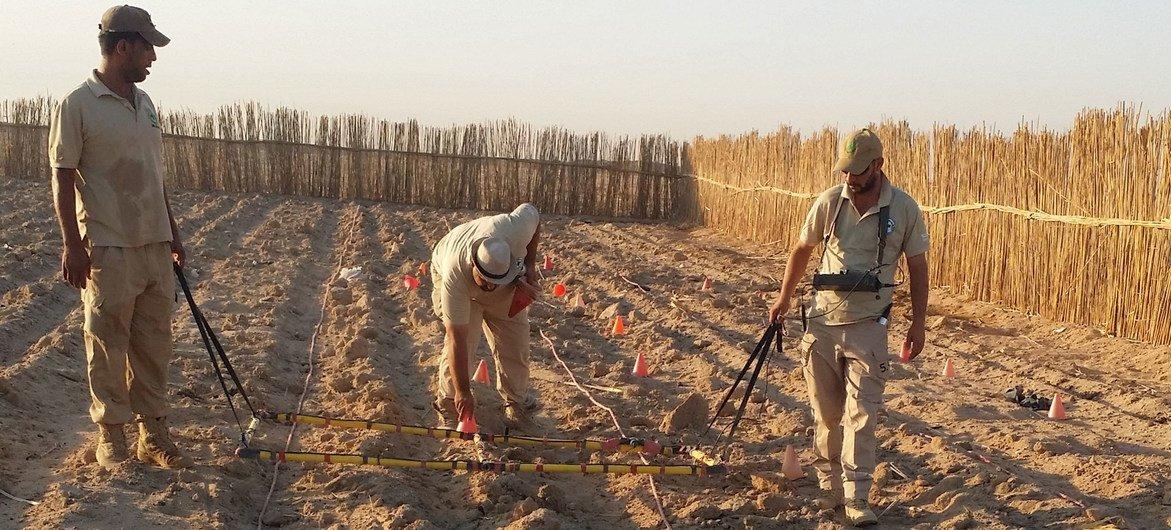 विशेषज्ञों की एक टीम इराक़ के एक मैदान में क्लस्टर बमों की खोज कर रही है.