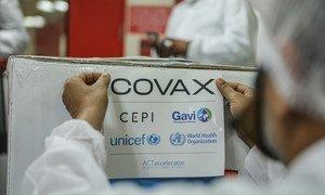 कोवैक्स कार्यक्रम के तहत, कोविड-19 वैक्सीन की पहली खेप, भारत से घाना भेजने की तैयारी, 23 फ़रवरी 2021. भारत के सीरम संस्थान में लाइसेंस के तहत वैक्सीन बनाई जा रही है.
