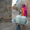 A nine-year-old girl pushes a wheelbarrow loaded with water-filled jerrycans in a IDP camp in Darfur, Sudan.