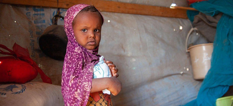 فتاة تبلغ من العمر ثلاث سنوات تتلقى مساعدات غذائية من برنامج الأغذية العالمي في مأوى للنازحين في تعز، اليمن.