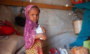 也门塔伊兹的一个境内流离失所者收容所里的一名三岁女孩在接受粮食署的粮食援助。
