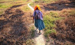在遭受军方奴役后,危地马拉妇女玛利亚获得了联合国酷刑受害者基金的帮助。