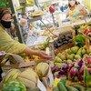 Vice-chefe da ONU defende que governos estão cada vez mais conscientes do valor de se adaptarem os sistemas alimentares