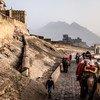 Des touristes en Inde font une promenade à dos d'éléphant au fort d'Amber juste à l'extérieur de Jaipur.