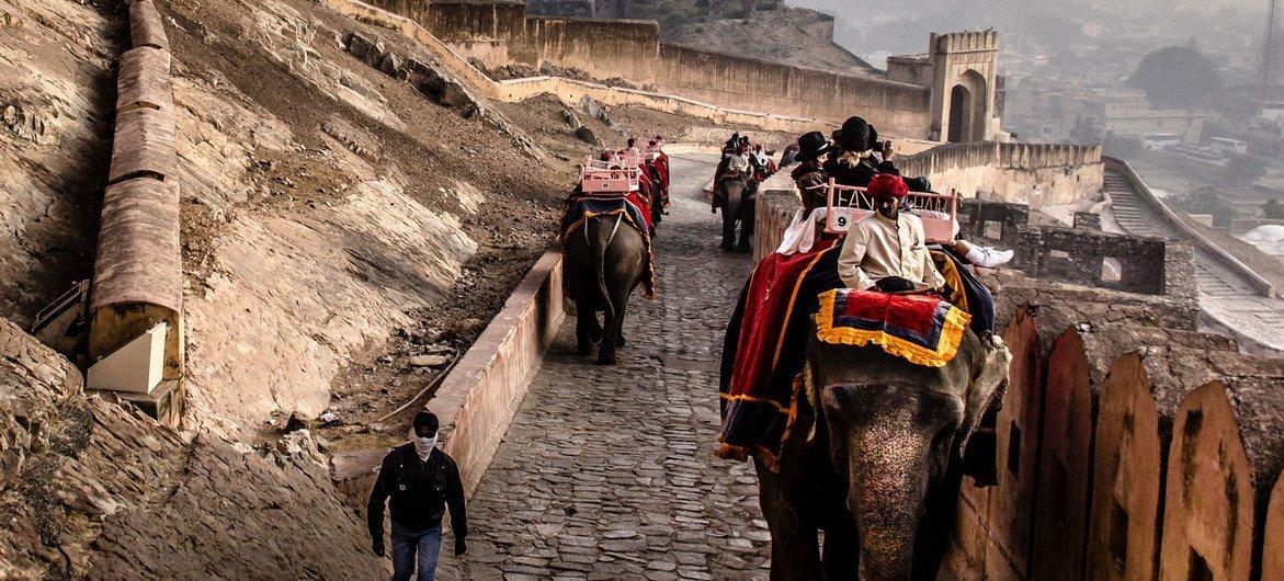 سياح في الهند ياخذون جولة على سياحية على ظهور الافيال.