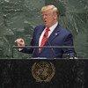 美国总统特朗普出席联合国大会第74届会议一般性辩论。