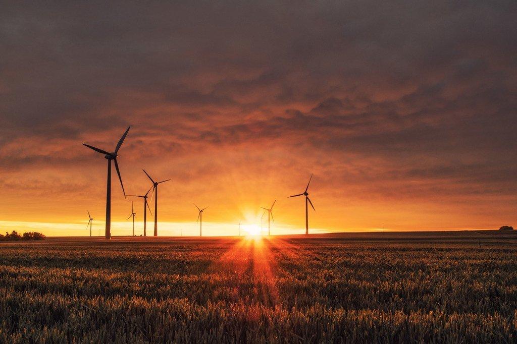 Imagen de un parque eólico en Biedesheim, Alemania
