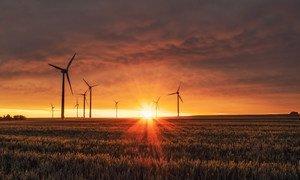 德国比德舍姆的一个风力发电厂。